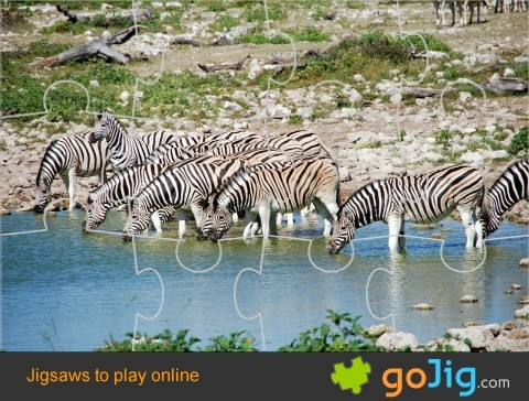 Jigsaw : Zebras Watering Hole