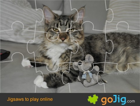 Jigsaw : Cat and Mouse