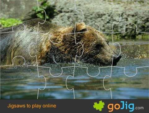 Jigsaw : Brown Bear
