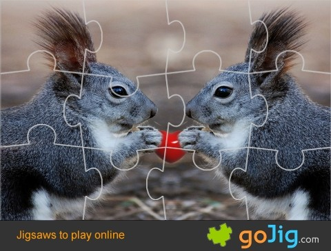 Jigsaw : Love Squirrels