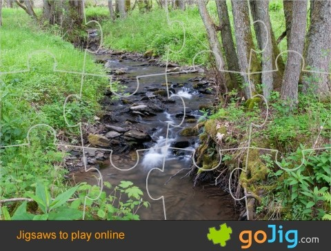 Jigsaw : Forest Stream