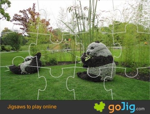 Jigsaw : Panda Artwork