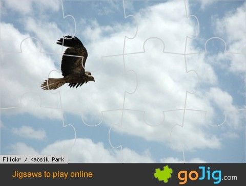 Jigsaw : Eagle in Flight
