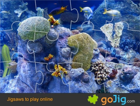 Jigsaw : Coral Reef