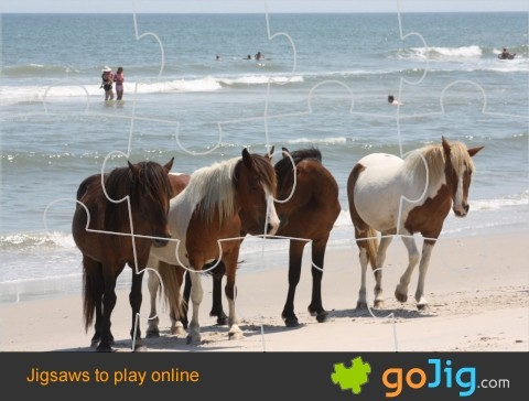 Jigsaw : Ponies On The Beach