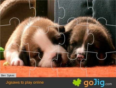 Jigsaw : Sleeping Puppies