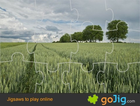 Jigsaw : Wheat Field