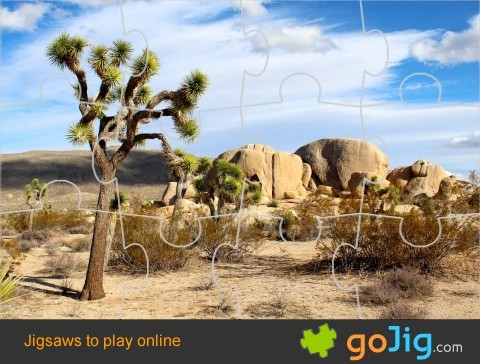Jigsaw : Joshua Tree in the Desert