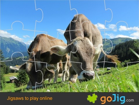 Jigsaw : Cows in Austria
