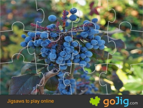 Jigsaw : Blueberries on the Tree